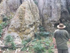 Hanging Rock Rocks